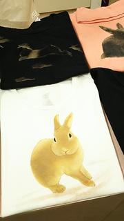 うさぎ Tシャツ 白